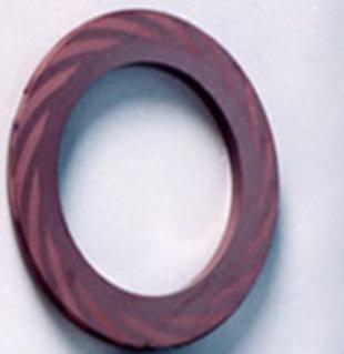 SiC Gas Seal